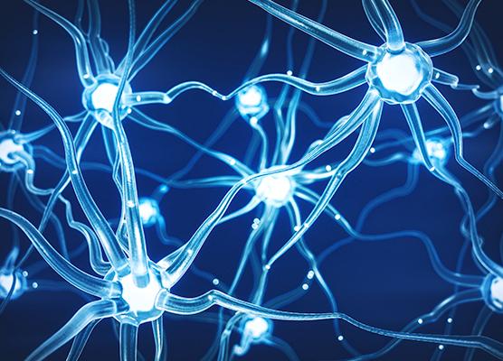 NEUR 160 The Neuroscience Of Music Penn LPS Online