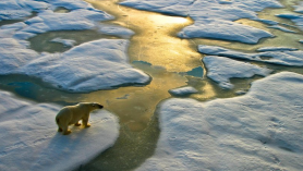 Climate change is one subject that everyone can benefit from understanding more deeply. (GETTY IMAGES)